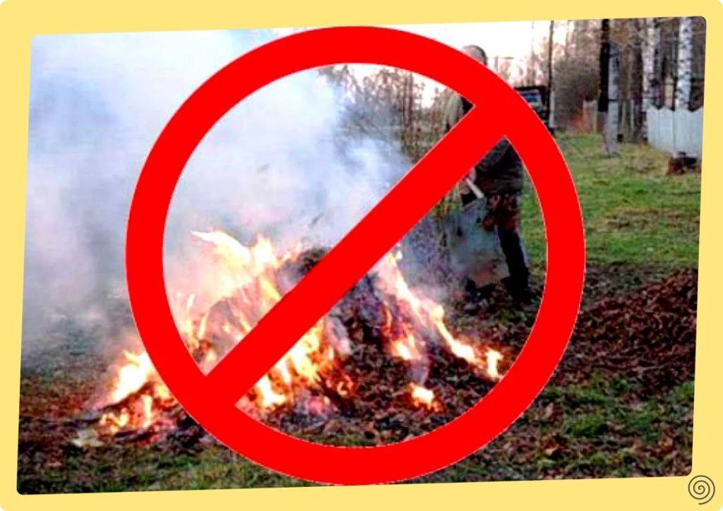 Соседи сжигают мусор на участке: Думаете это нарушение?