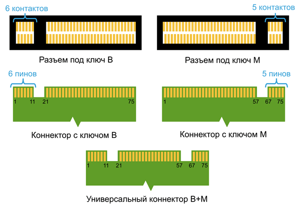 Подключение NVMe SSD: изучаем особенности стандарта M.2